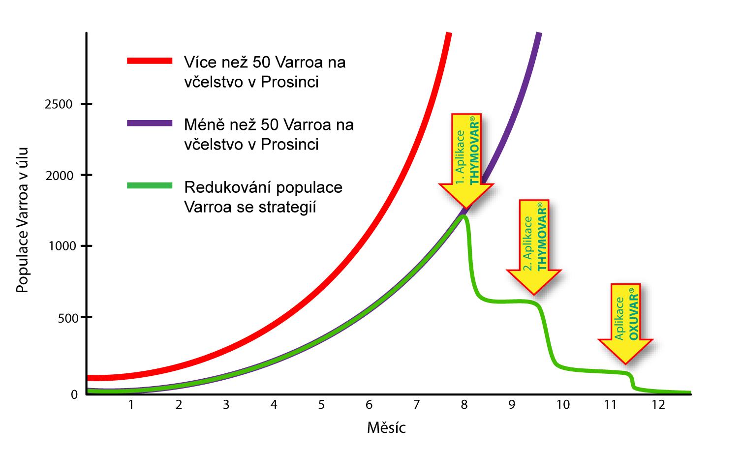 oxuvar-graf